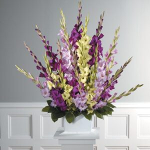 Rays of colorful Gladiolus basket