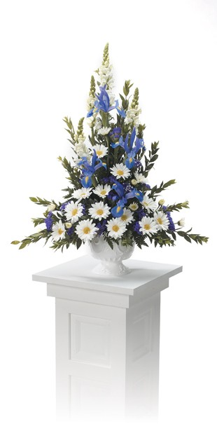 Elegant blue Iris and cheerful white daisy arrangement